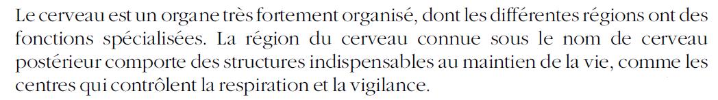 19 - Dépendance - Cerveau post - Rhombencéphale